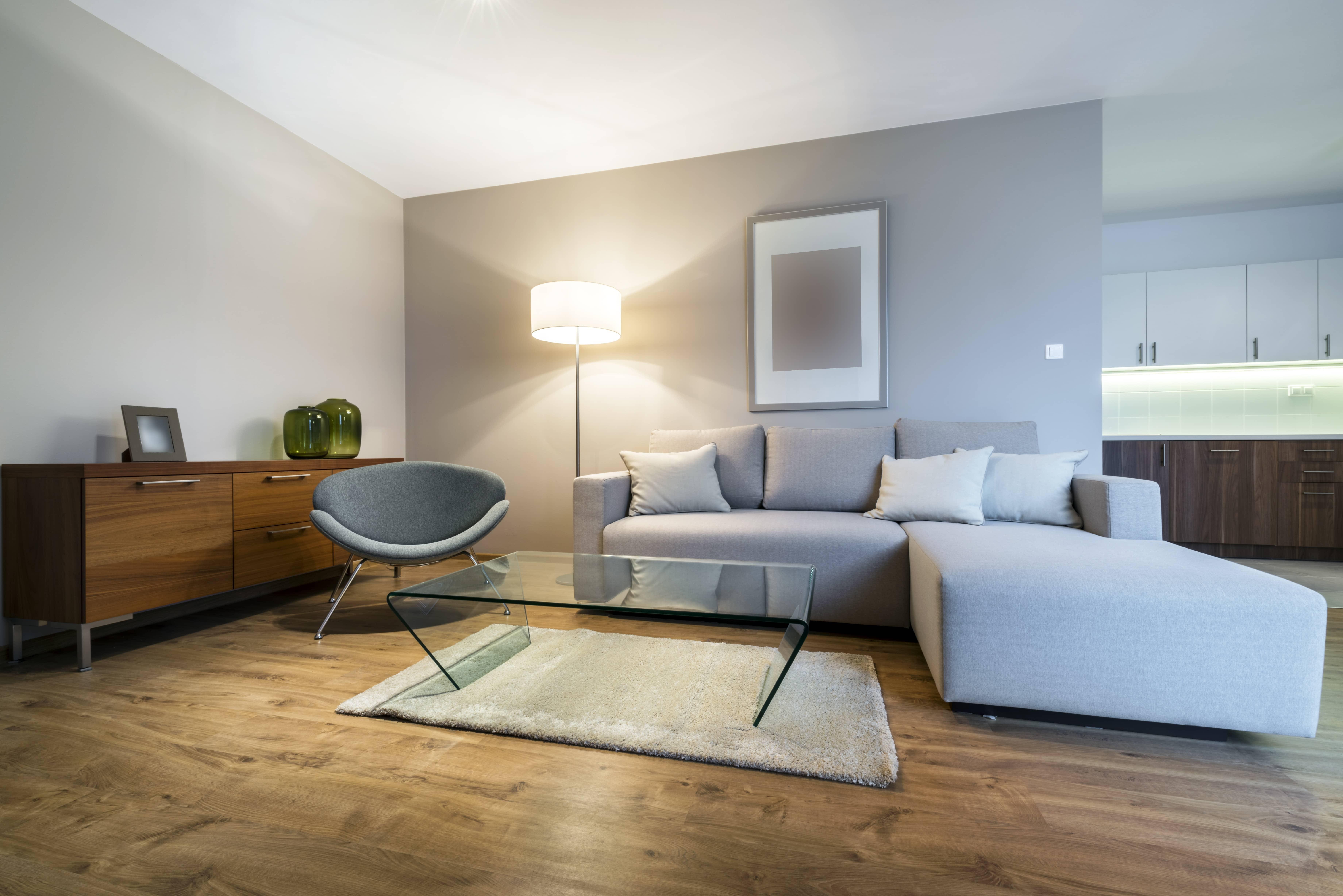Salon meublé, immobilier neuf et moderne